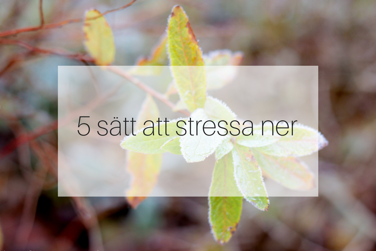 5 ENKLA SÄTT ATT HITTA ÅTERHÄMTNING I VARDAGEN