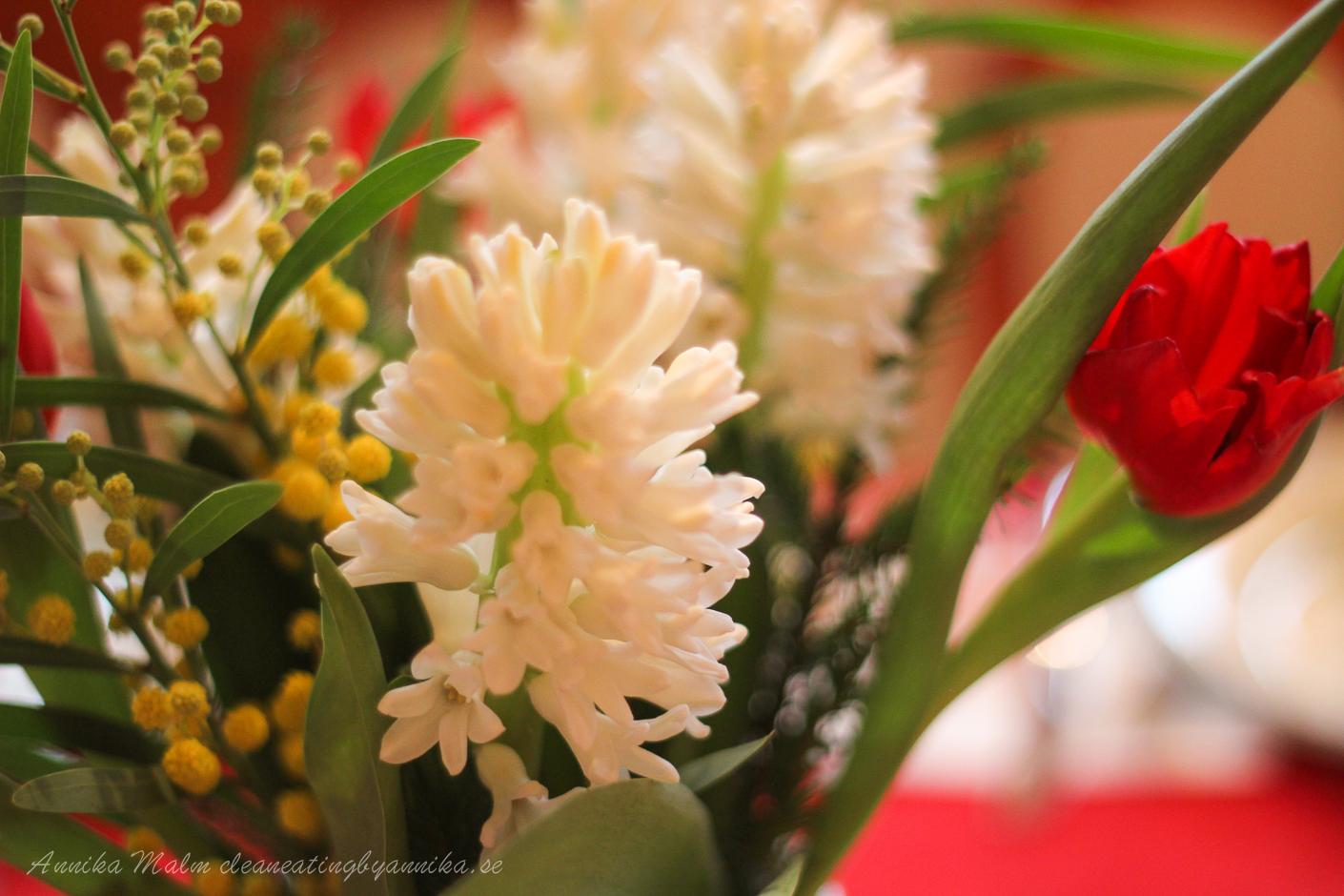 jul hyacint