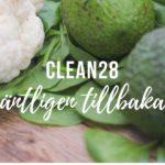 Clean28 online kurs viktminskning