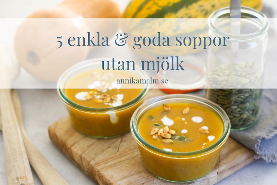 Soppa utan mjölk – 5 recepttips