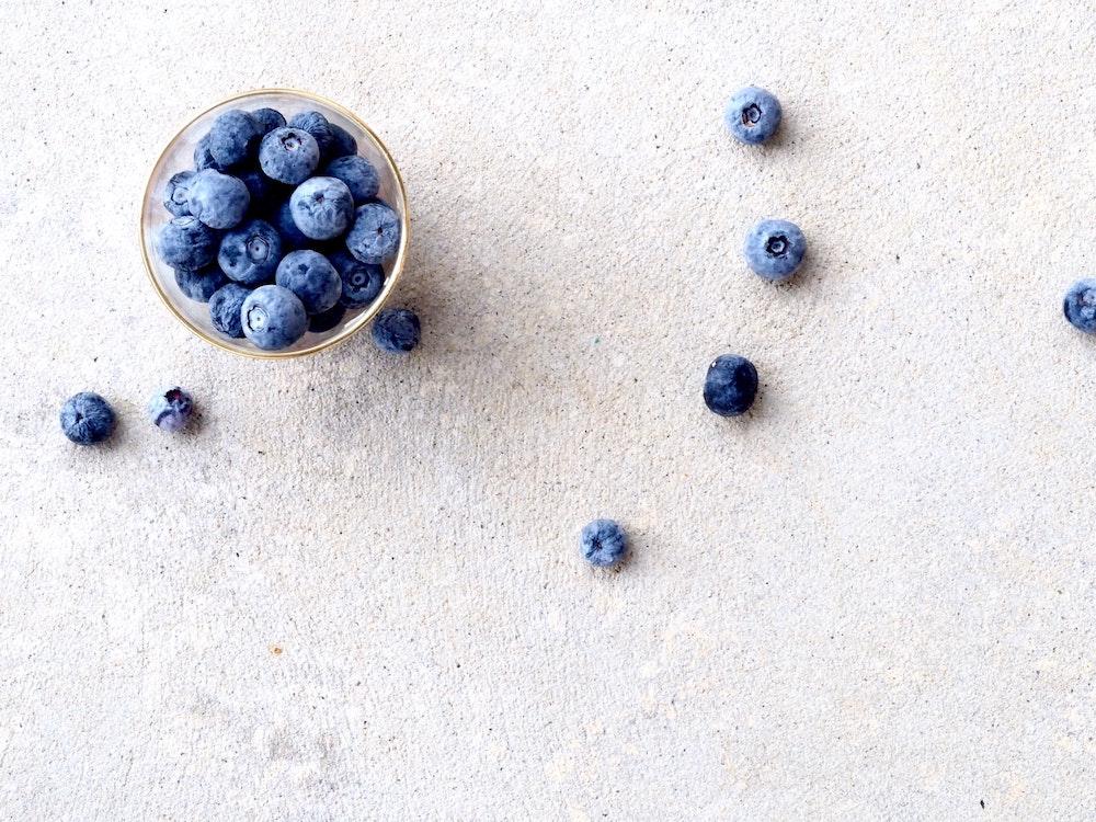 Gut feeling Labs – testa tarmfloran